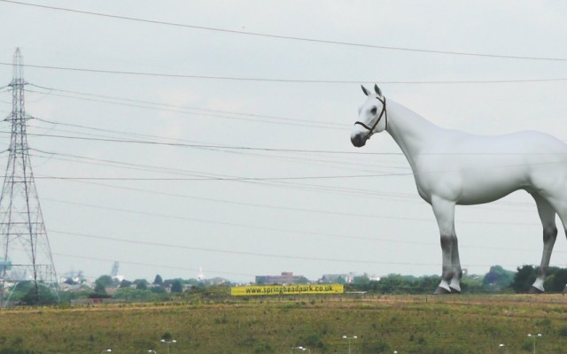 The White Horse by Mark Wallinger